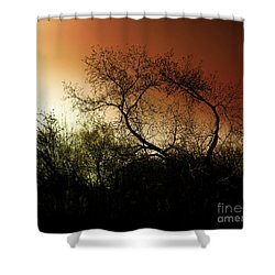 Shadowlands 9 Shower Curtain by Bedros Awak