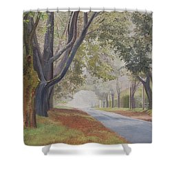 Shadow And Fog Down Beautiful Atlantic Avenue Shower Curtain