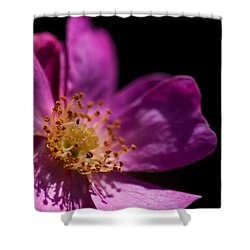 Shadows In My Heart Shower Curtain by Alex Lapidus