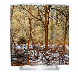 Shower Curtain featuring the photograph Shadows In The Urban Jungle by Nina Silver