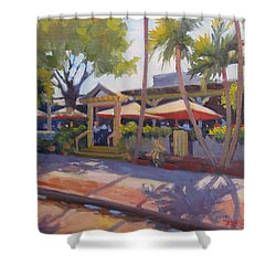 Shadows On Tommy Bahamas Shower Curtain by Dianne Panarelli Miller