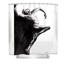 Shadowtwister Shower Curtain