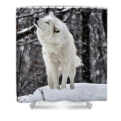 Shower Curtain featuring the photograph Shake It by Heather King