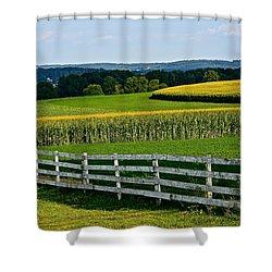 Shapely Cornfield 2 Shower Curtain