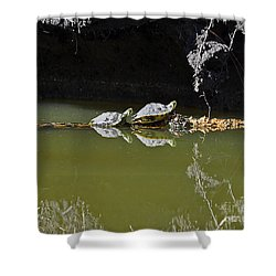 Sharing Sliders Shower Curtain by Al Powell Photography USA