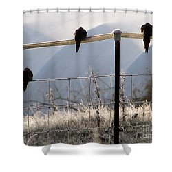 Sharing The Morning News Shower Curtain
