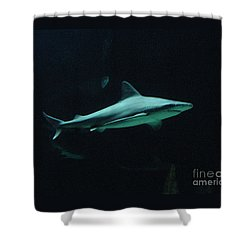 Shark-09451 Shower Curtain by Gary Gingrich Galleries