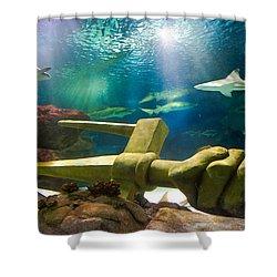 Shark Tank Trident Shower Curtain by Bill Pevlor