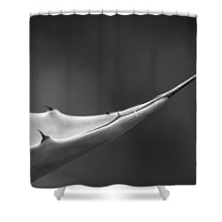 Sharp Agave. Shower Curtain