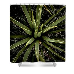 Sharp Points - Yucca Plant Shower Curtain by Steven Milner