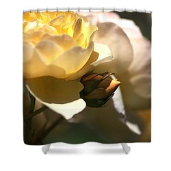 She Dreams Of Growing Up.... Shower Curtain by Joy Watson
