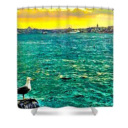 She Is Late Again  Shower Curtain by Zafer Gurel