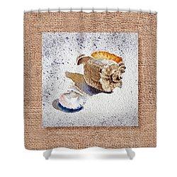 She Sells Sea Shells Decorative Collage Shower Curtain by Irina Sztukowski