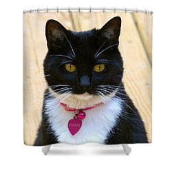 Sheeba Shower Curtain