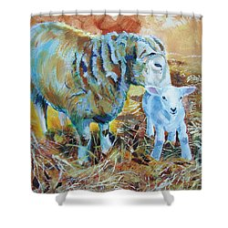 Sheep And Lamb Shower Curtain