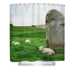 Sheep At Avebury Stones - Original Shower Curtain by Marilyn Wilson