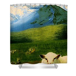 Sheep Looking In Shower Curtain