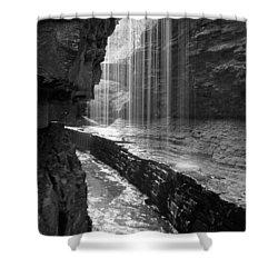 Sheer Elegance Shower Curtain by J Allen