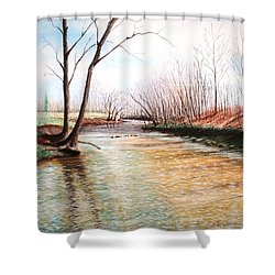 Shower Curtain featuring the pastel Shelby Stream by Stacy C Bottoms