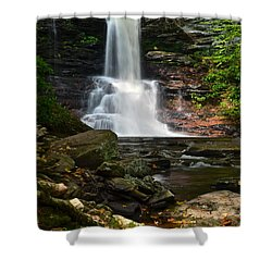 Sheldon Reynolds Shower Curtain by Frozen in Time Fine Art Photography