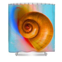 Shell Shower Curtain