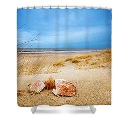 Shells On Sand Shower Curtain by Michal Bednarek