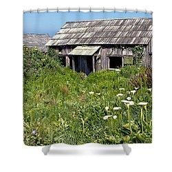 Shepherd's Cabin Shower Curtain by Kathleen Bishop