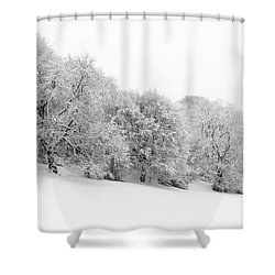 Sherman's Wood Shower Curtain by Anne Gilbert