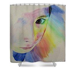 She's A Rainbow Shower Curtain