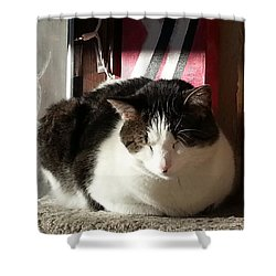 Shower Curtain featuring the photograph Shhh by Caryl J Bohn
