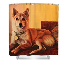 Shiba Inu Portrait Shower Curtain