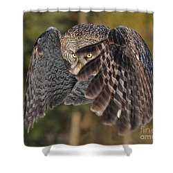 Shields Up Shower Curtain by Heather King