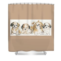 Shih Tzu Puppies Shower Curtain by Barbara Keith