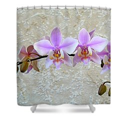 Shilleriana Shower Curtain