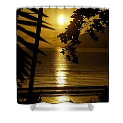 Shimmer Shower Curtain by Holly Kempe