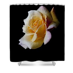 Shower Curtain featuring the photograph Shimmering by Doug Norkum