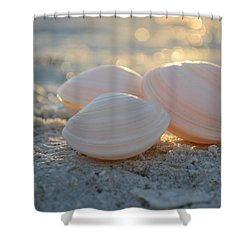 Shower Curtain featuring the photograph Shine On... by Melanie Moraga