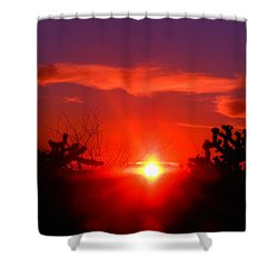 Shineing Star  Shower Curtain