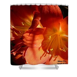 Shining Star Shower Curtain