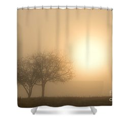 Shining Through Shower Curtain by Mike  Dawson