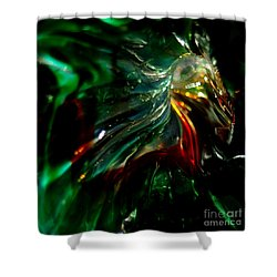 Shining Through The Glass Shower Curtain by Kitrina Arbuckle