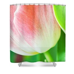 Shiny Shower Curtain