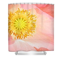 Shirley Poppy Center Shower Curtain by Chris Berry