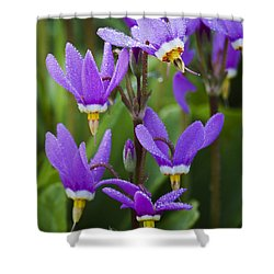 Shooting Stars Shower Curtain