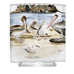 Shore Birds Shower Curtain