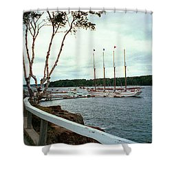 Shore Path In Bar Harbor Maine Shower Curtain