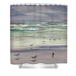 Shoreline Birds IIi Shower Curtain