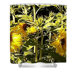Shout Out Summer Shower Curtain by Martin Howard