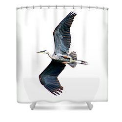 Shower Curtain featuring the photograph Showing Some Leg by Heather King