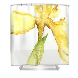 Showtime Shower Curtain by Sherry Harradence